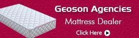 Geoson Agencies