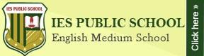 Ies Public School