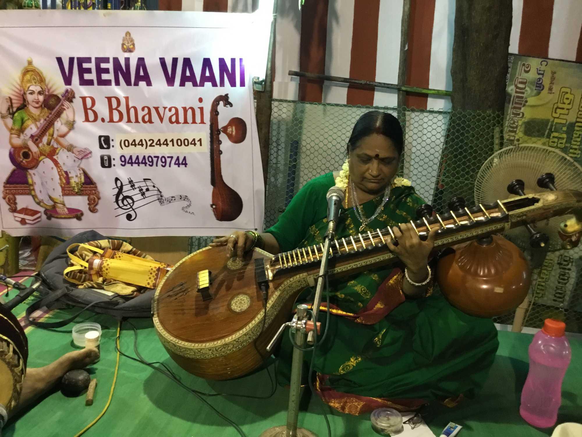 Top Music Classes For Veena At Home in Anna Nagar, Chennai