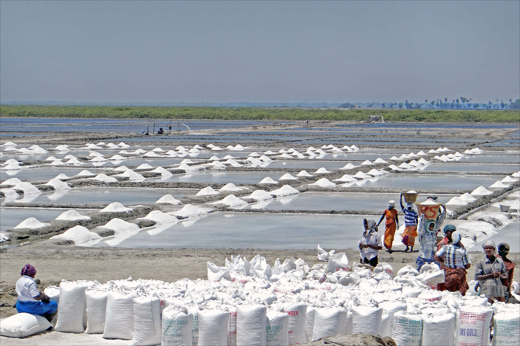 Top 30 Salt Manufacturers in ICF North Colony-Konnur, Chennai - Justdial