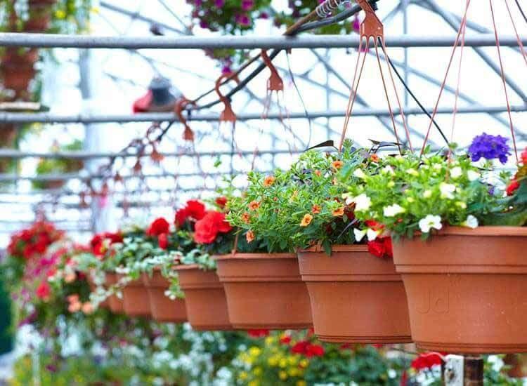 Top Natural Fertilizer Manufacturers in Karur West - Best Natural