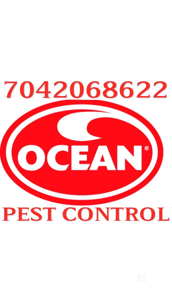 Top 20 Pest Control in Syndicate Enclave-Dabri - Pest