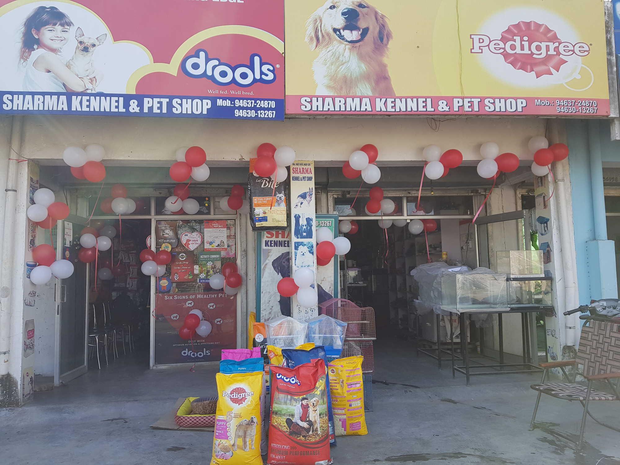 Top Pet Shops For Dog in Hoshiarpur - Best Pet Store - Justdial