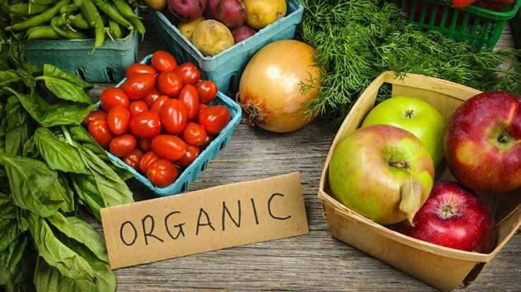 Top 100 Vegetable Exporters in Chennai - Justdial