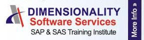 Dimensionality Software Services
