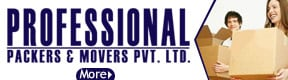 Professional Packers & Movers pvt ltd