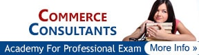 Commerce Consultants