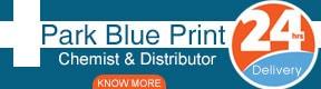 Park Blue Print