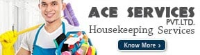 ACE SERVICES PVT LTD