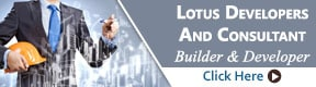 LOTUS DEVELOPERS AND CONSULTANT