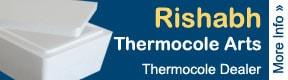 Rishabh Thermocole Arts