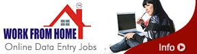 Work From Home Pune