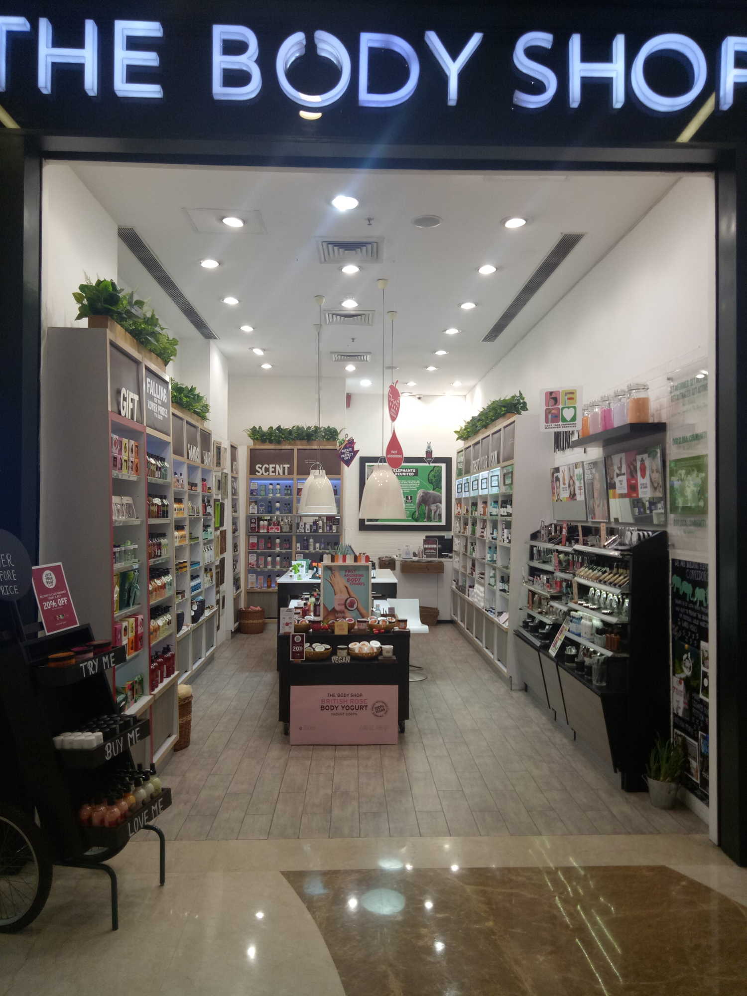 Body Shops Near Me >> Top The Body Shop Beauty Product Dealers In Amritsar Best