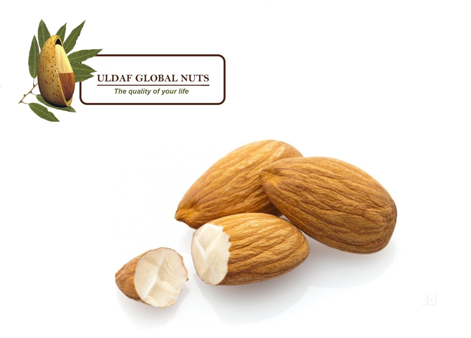 Top Dry Fruit Importers in Bangalore - Justdial