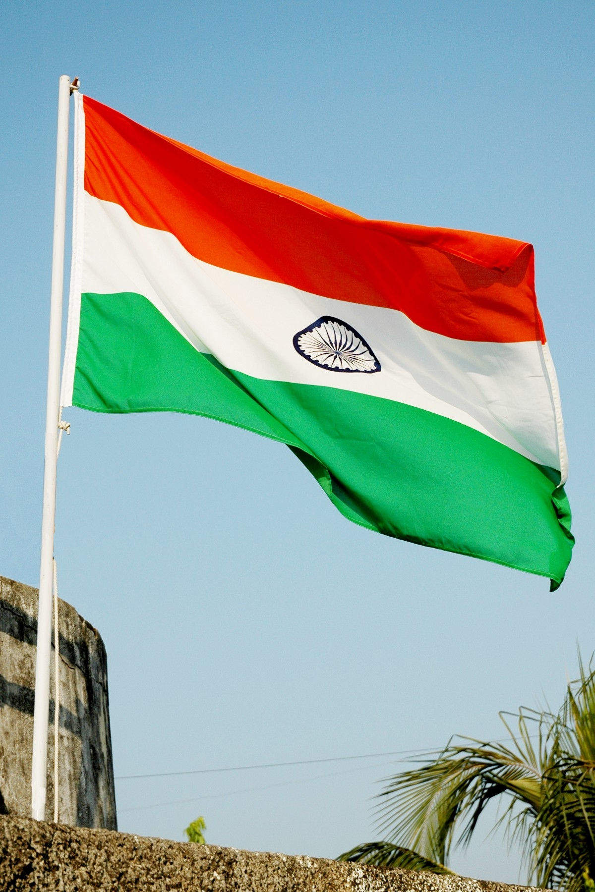 Top 50 Flag Retailers in Bangalore - Justdial