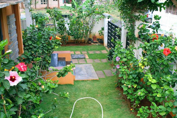 My Garden Space The Organic Garden Bhoopasandra Plant