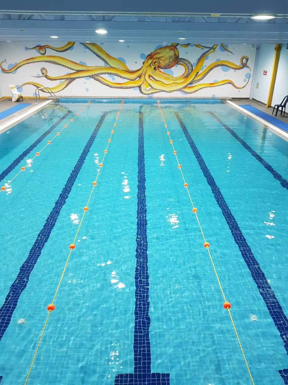 Top Swimming Classes in Rt Nagar - Best Swimming Training Classes