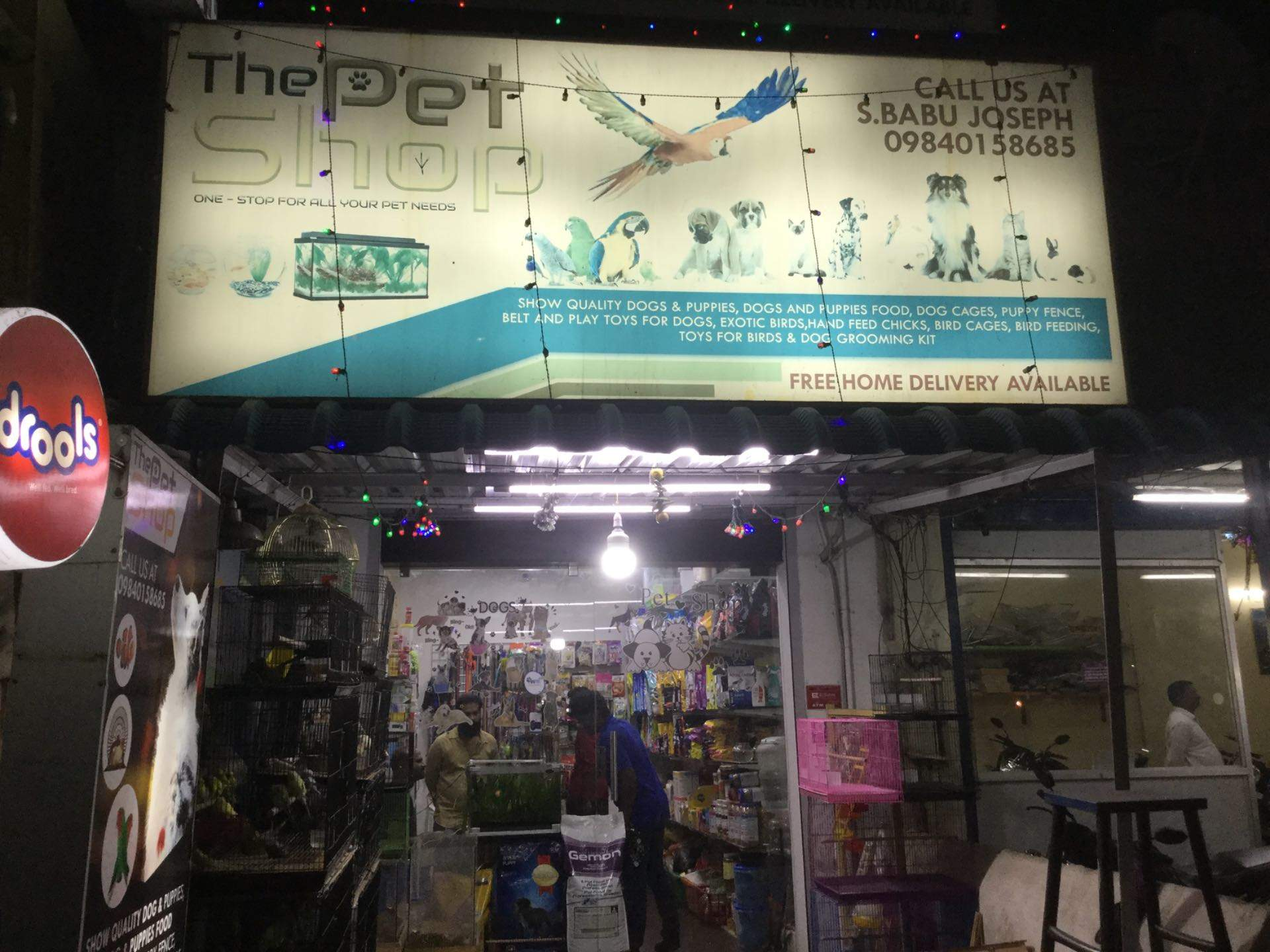 Top 50 Pet Shops For Exotic Birds in Chennai - Best Pet Stores For