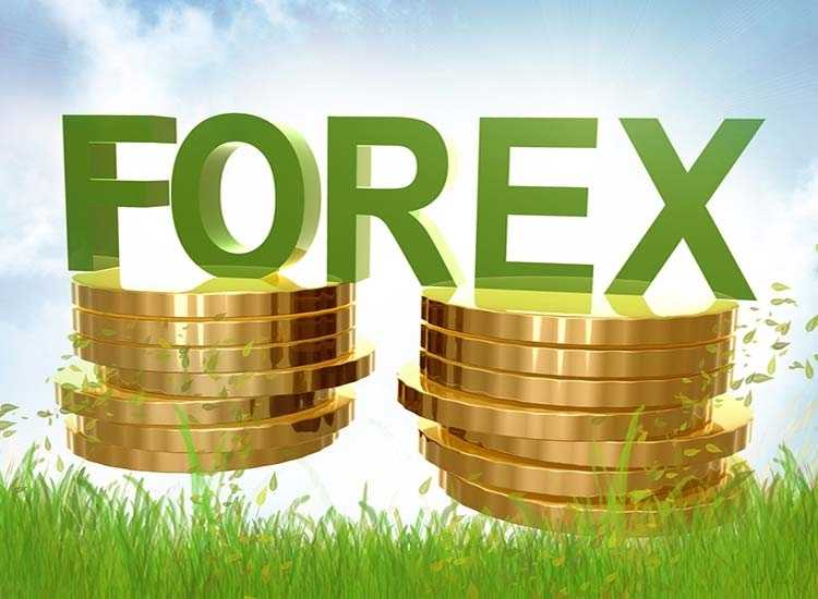 Foreign Exchange Agents In Sultan Palya Bangalore