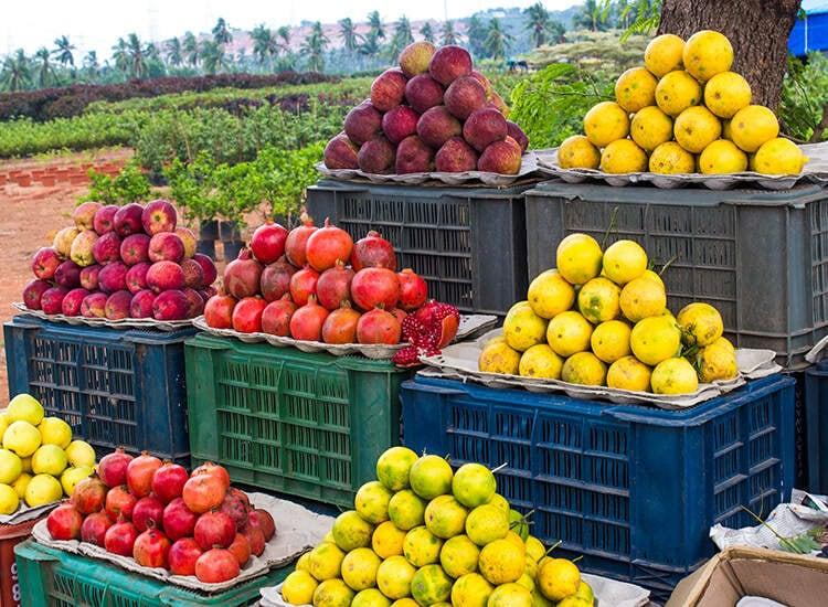 Top 100 Fruit Wholesalers in Ernakulam - Best Fruit