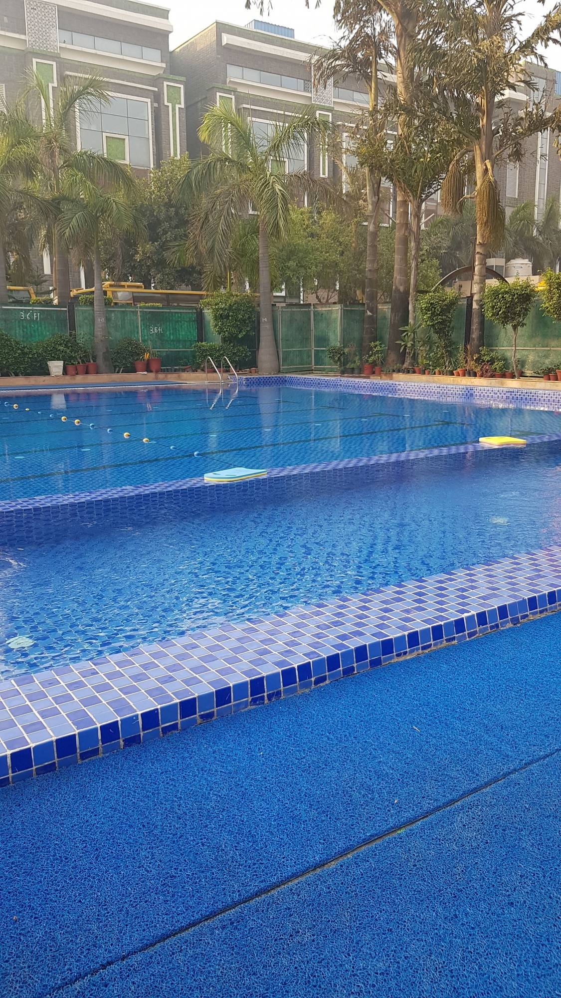 Top Swimming Classes in Rohini Sector 18 - Best Swimming Training ...