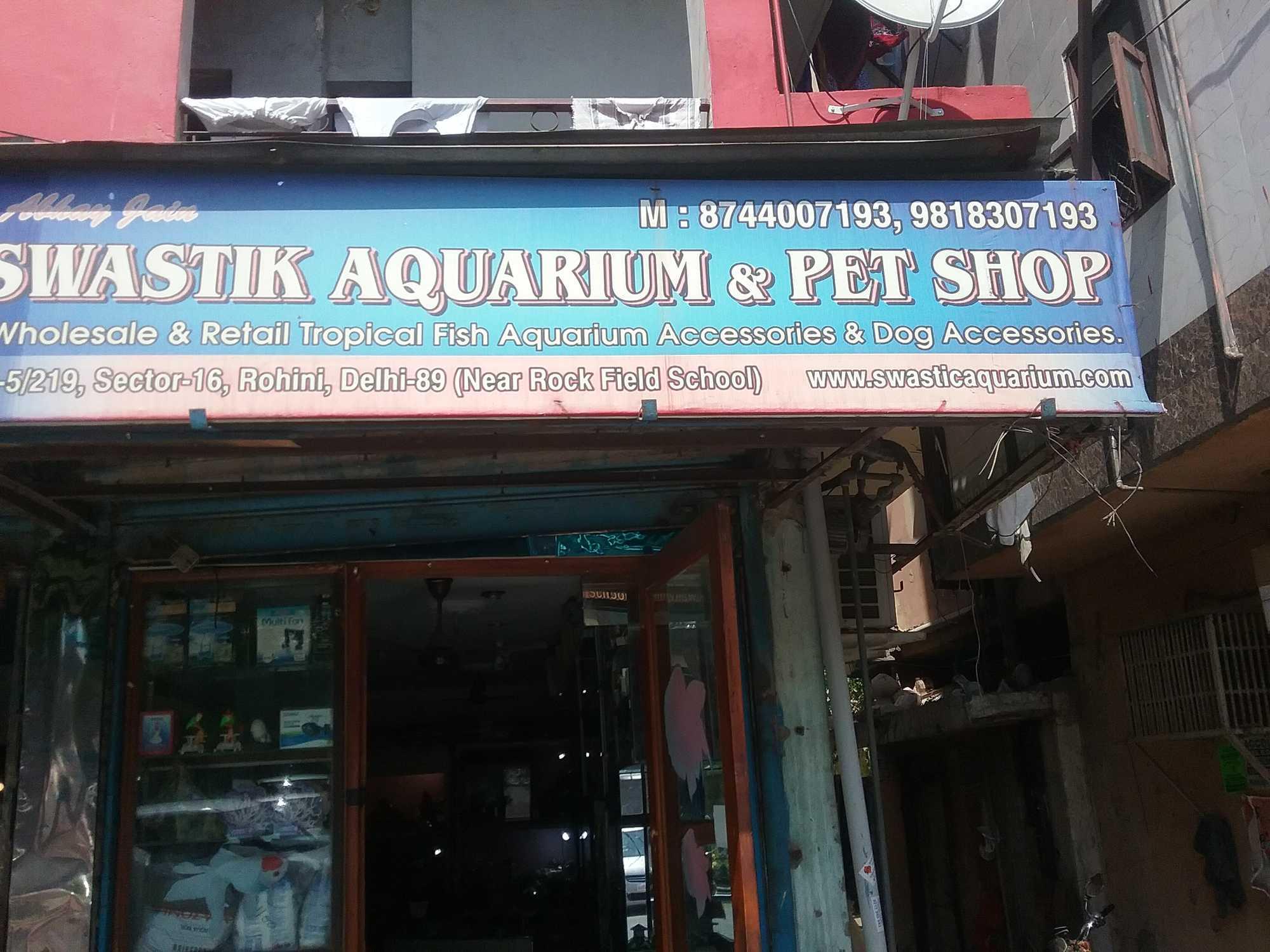 Top 4 Aquarium Australian Rainbow Fish Dealers In Delhi Justdial
