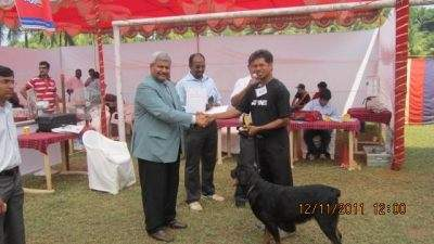 Top Dog Training Centres in Goa - Best Pets Training - Justdial