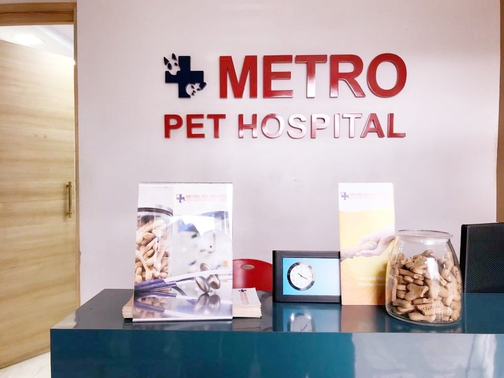 Metro Pet Hospital Dlf City Phase 4 Veterinary Doctors In