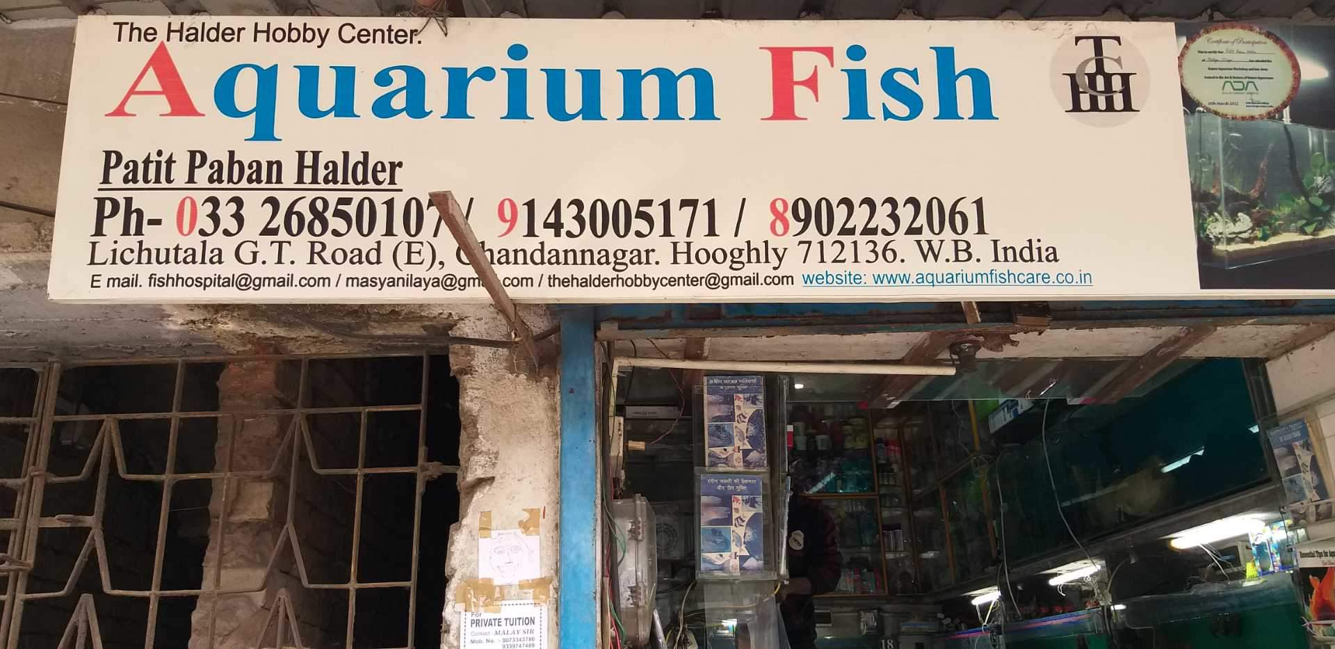 Top 50 Fish Aquarium Dealers in Hooghly - Best Fish Aquarium