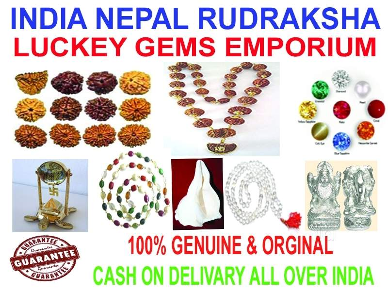 Top 100 Rudraksha Dealers in Hyderabad - Best Rudraksha Bead