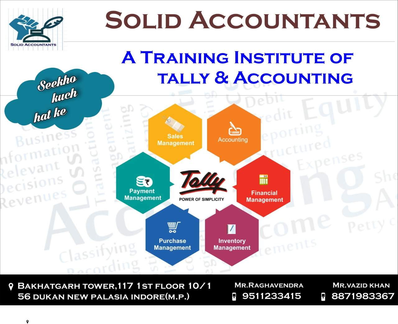 professional business accountant