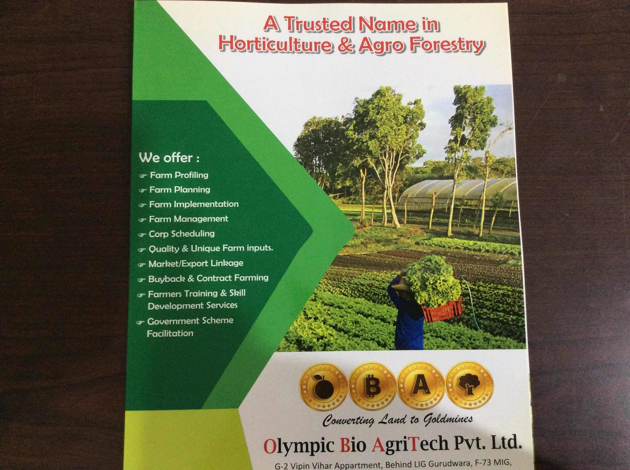 Plant Nurseries In Malwa Mill Indore