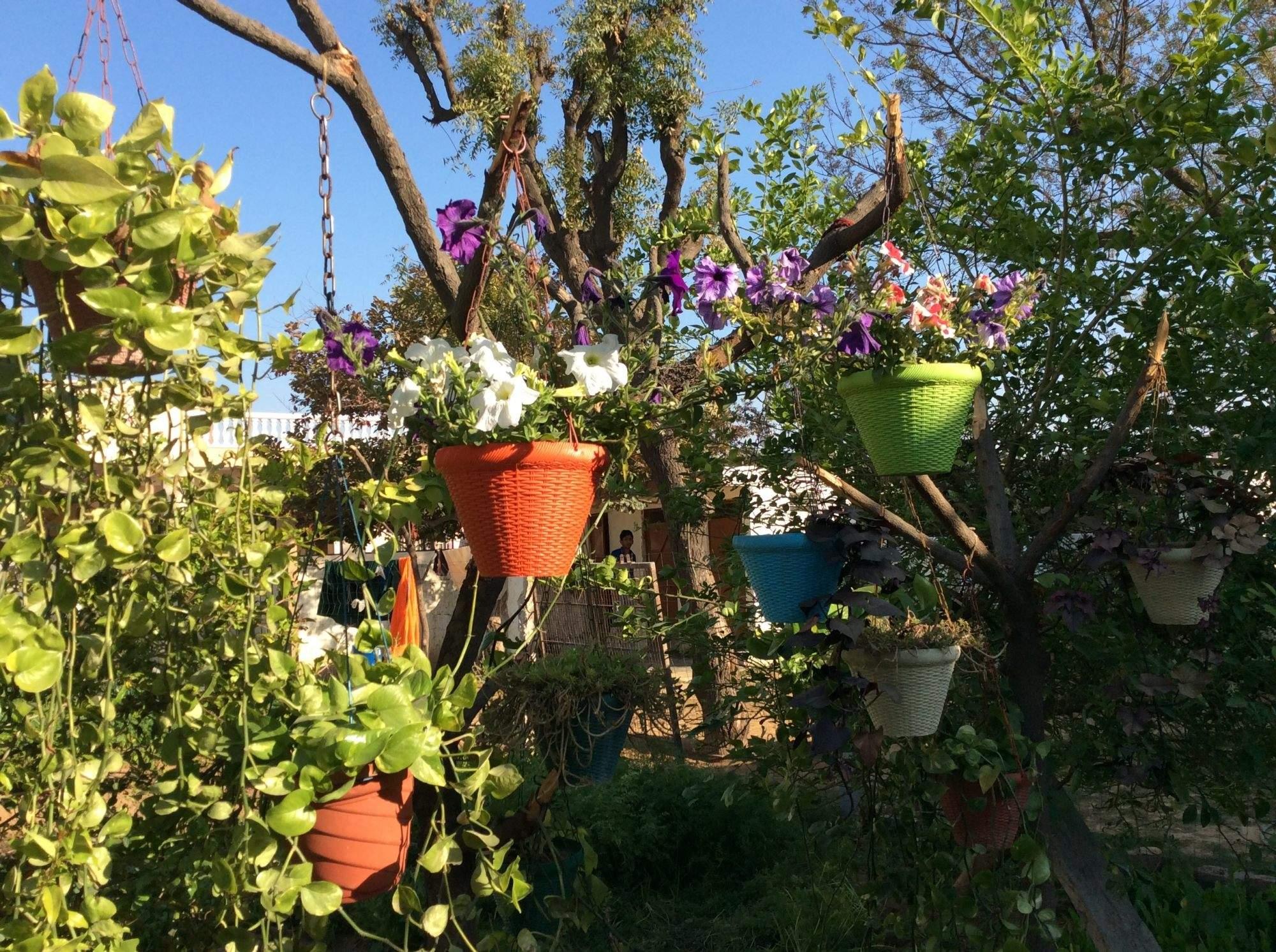 Home Garden Irrigation System 71