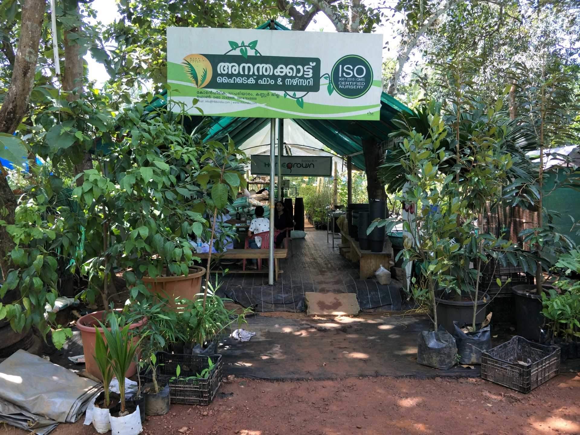 Plant Nurseries In Kannur