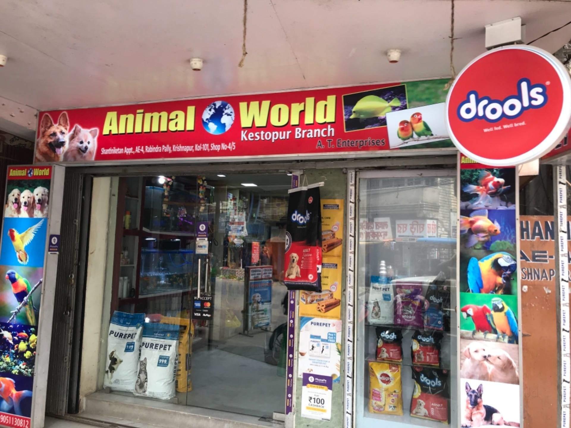 Piu Poppy Dum Dum Pet Shops In Kolkata Justdial