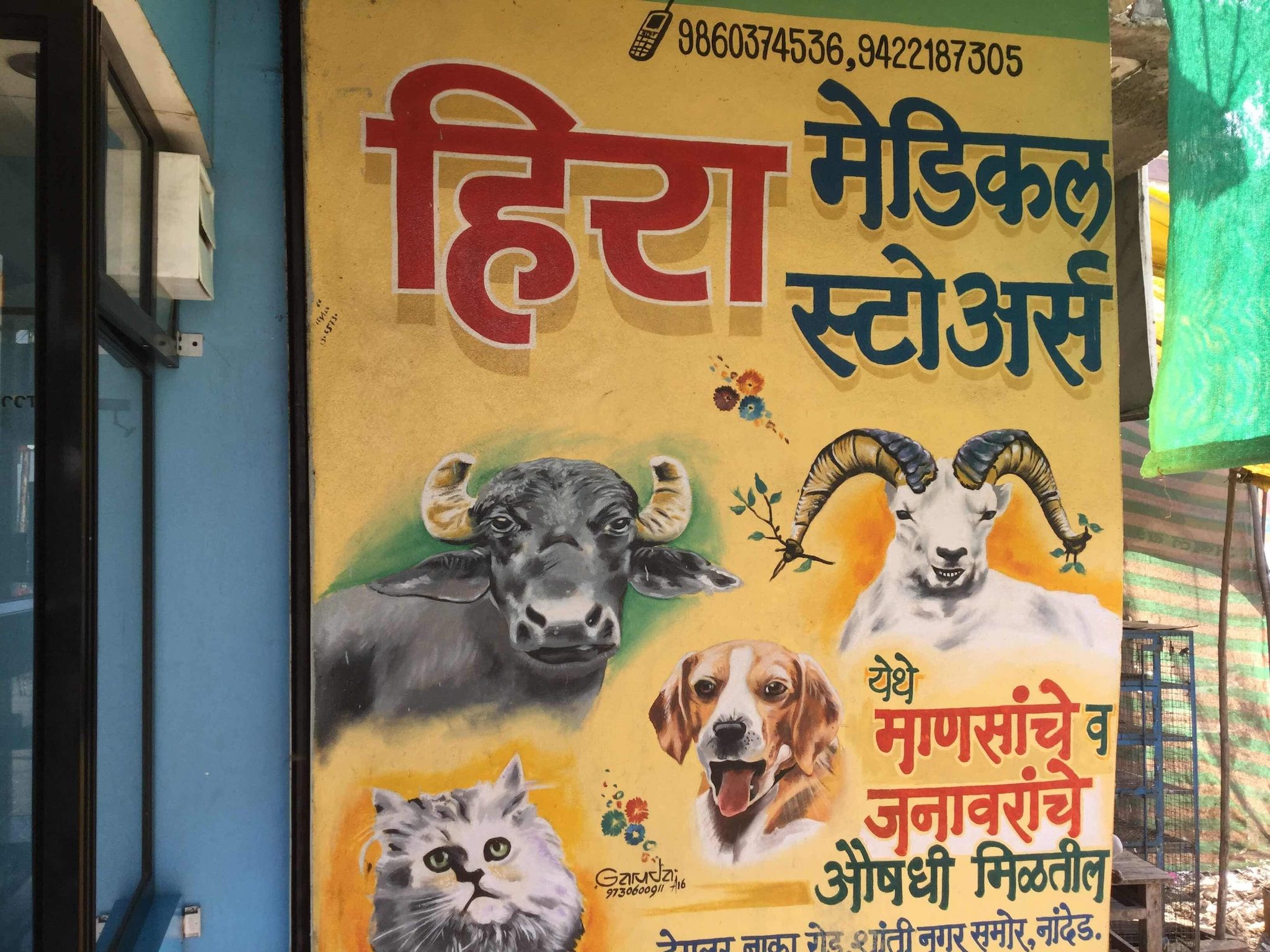 Top Veterinary Feed Suppliers in Nanded - Justdial