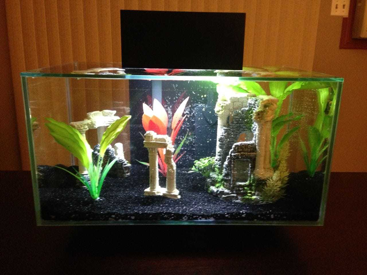 Top 10 Fish Aquarium Dealers in Karol Bagh - Best Fish Aquarium