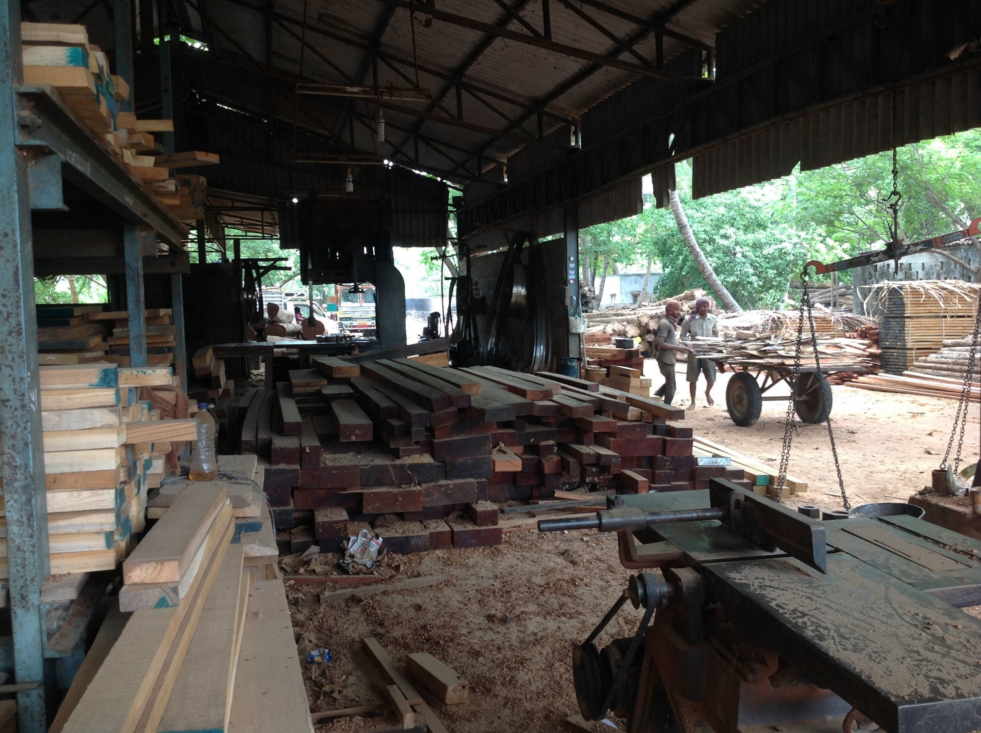 Top Malaysia Salwood Timber Importers in Gandhi Market - Best