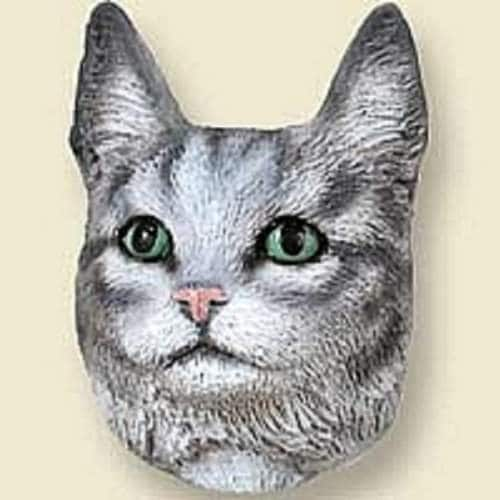 Buy Conversation Concepts Silver Tabby Maine Coon Cat Doogie Head Features Price Reviews Online In India Justdial