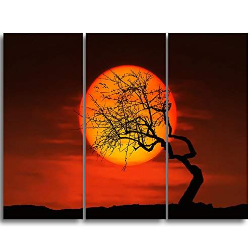 Buy Design Art Mt10900 3p Birds Amp Tree Silhouette At Sunset Extra Large Metal Wall Art Landscape 3 Piece 36x28 Features Price Reviews Online In India Justdial